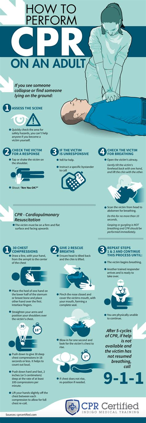 how to do cpr on a how to perform cpr on an infographic