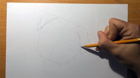 how to draw a realistic pug easy realistic drawings easy realistic drawing how to draw a realistic pug step step