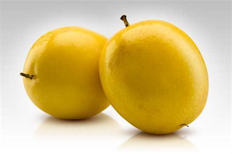 fruit yellow yellow fruit flower www pixshark images