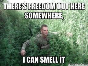 Freedom Meme - freedom