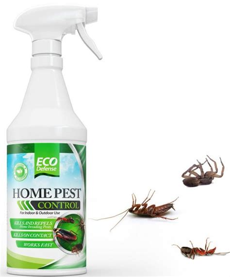 the 5 best bug sprays for home pest
