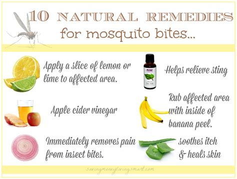 10 mosquito bite remedies saving money living smart