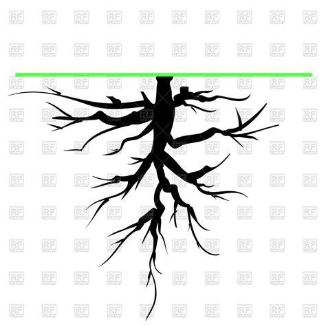 clipart vectors tree root royalty free vector clip image 70878