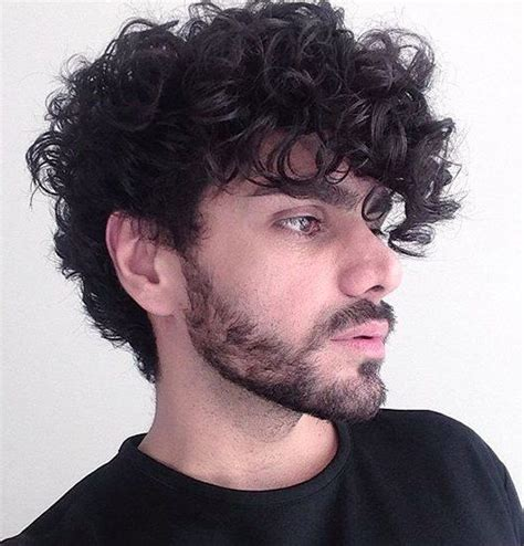 curly men hairstyles and haircuts guides curly hair guys