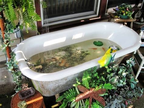 fish in bathtub bathing beauties repurposing bathtubs in the garden