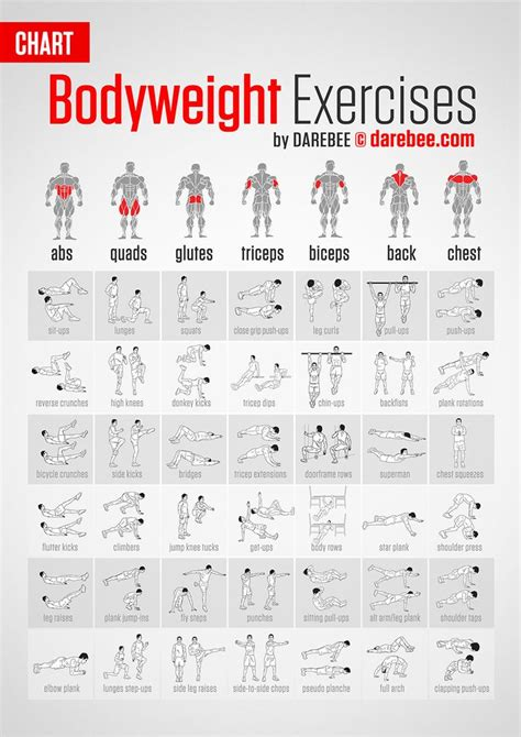 best 25 weight circuit ideas on