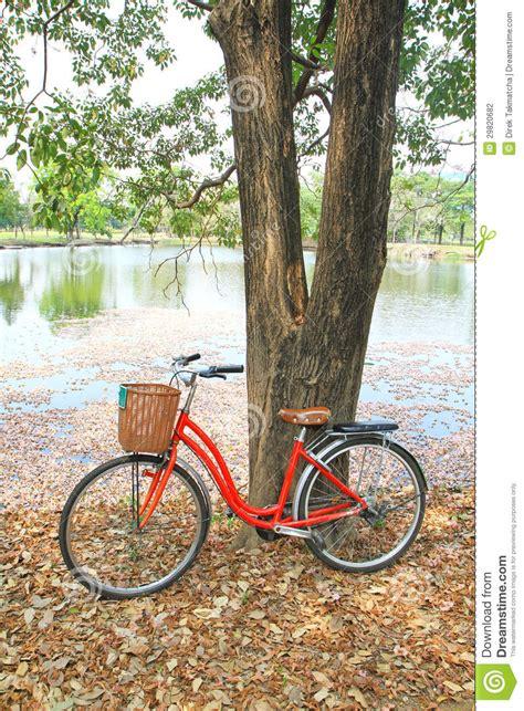 Bilder Aus Getrockneten Blättern by Rotes Fahrrad Gelehnt Auf Einem Baum Stockfotografie
