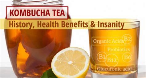 kombucha tea history health benefits insanity