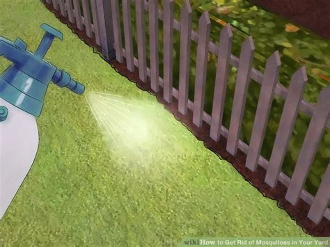eliminate mosquitoes in backyard how to get rid of mosquitoes in backyard outdoor goods
