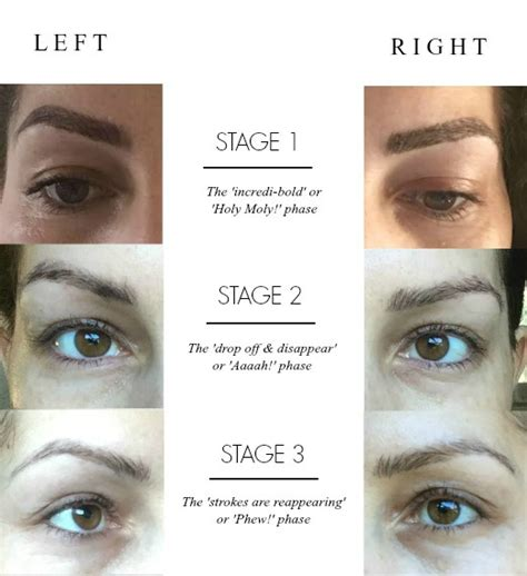 stages of a healing tattoo permanent makeup eyebrows healing style guru fashion