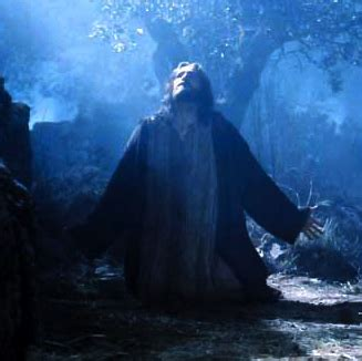 the last hours of jesus from gethsemane to golgotha books jesus every nook and cranny