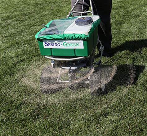 how to care for your lawn after aeration seeding canopy