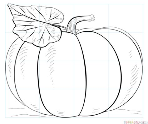 pumpkin sketches how to draw a pumpkin step by step drawing tutorials