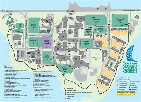texas a and m map texas a m university corpus christi acalog acms