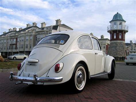 1967 vw bug 1967 vw beetle bug one year classic vw beetles