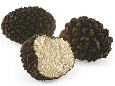 italian truffle food trends