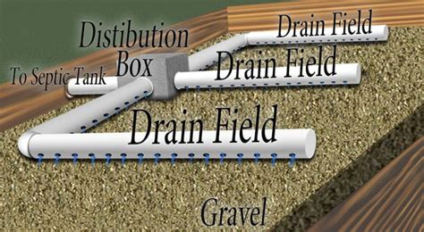 septic drain field diagram how does a septic tank work house sewer system diagram