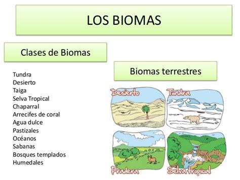 que son los biomas biomas