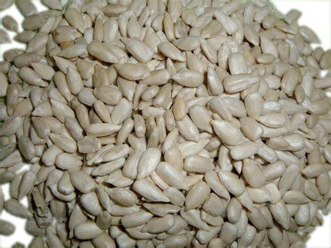Sunflower Seed 1kg Mentah sunflower seeds kernel yogiji s food mart