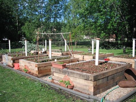 my raised veggie garden beds with worm farming right in