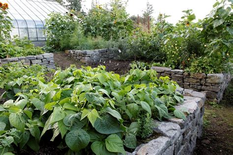 creating a raised bed vegetable garden raised bed garden design how to layout build garden