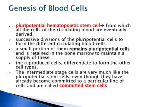 genesis of blood cells general physiology genesis of blood cells