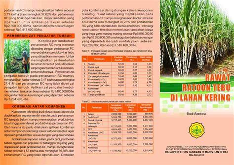 Budidaya Tanaman Jarak Pagar Kepyar By Suryono balai penelitian tanaman pemanis dan serat tebu