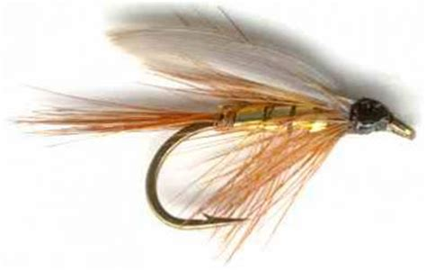 Fly Fishing Giveaway - free fly fishing trip contest announced by popular fly fishing blog for women she s