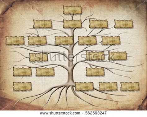 Family Tree Illustration Your Design Stock Illustration 562593247 Shutterstock At Family Tree For Your Design
