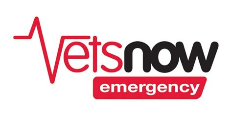 vets near me vet emergency hospital near me pets world
