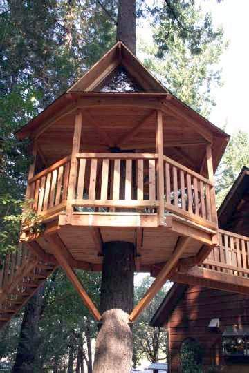 hexagon tree house plans plans page