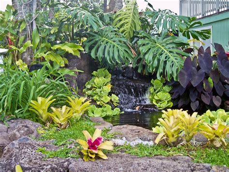 Tropical Garden Ideas Pictures Tropical Garden Landscaping Ideas