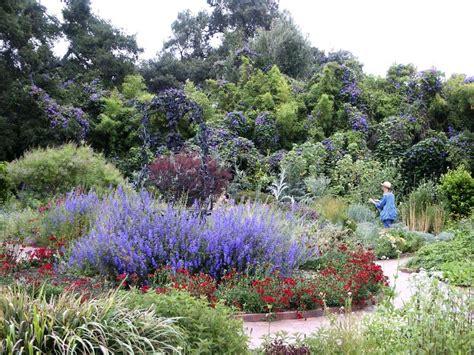 file herb garden spring blooms huntington jpg english herb garden photos