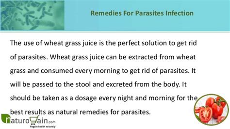 Stools Every Morning by Effective Remedies For Parasites To Give Relief