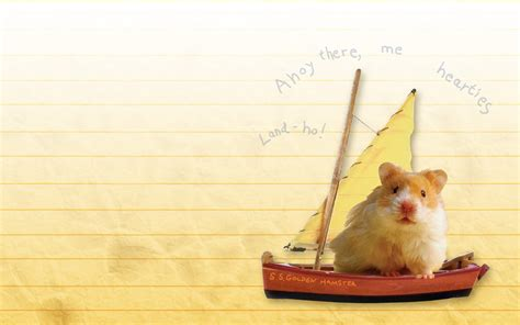 humphrey s pet show panic humphrey s tiny tales books humphrey sets sail wallpaper scholastic club