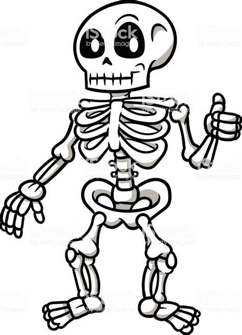 skeleton clipart skeleton giving a thumbs up vector illustration