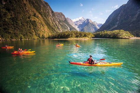 fjord queenstown milford sound and queenstown cruises southern discoveries