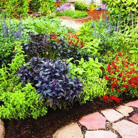 low maintenance low maintenance landscaping plants best zone 9 landscape