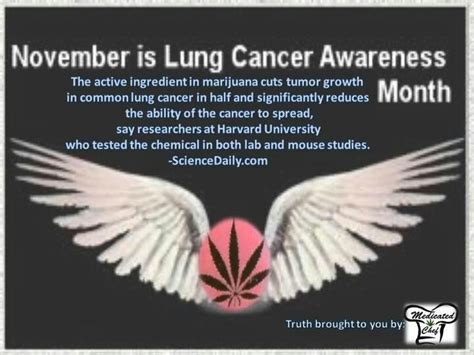 lung cancer awareness month lung cancer awareness month lung cancer pinterest