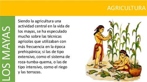 imagenes agricultura maya mayas