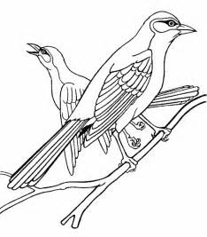 finch coloring page animals town free finch color sheet