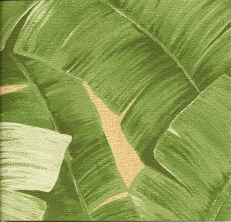 bananas leaf wallpaper banana leaf cork wallpaper we need a bigger place and