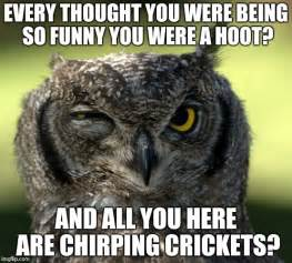 Crickets Chirping Meme - funny owl memes www imgkid com the image kid has it