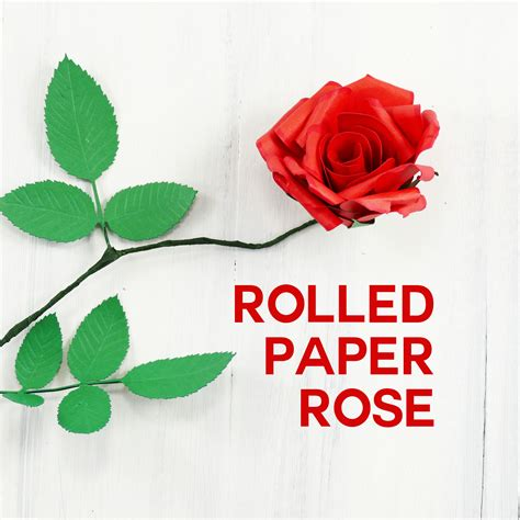 rolled paper roses template rolled paper flowers template flowers healthy