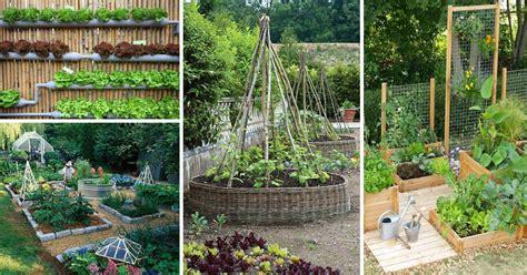 fruit and vegetable garden ideas 10 excellent diy garden ideas use to grow fruits
