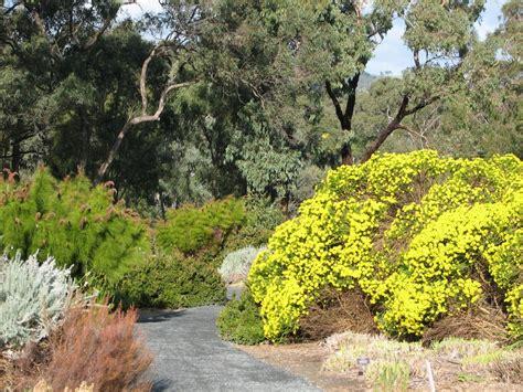 Wittunga Botanic Gardens Birds In A Suburban Garden Trevor S Birding