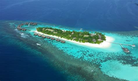 best snorkeling maldives what are the best maldives resorts for snorkeling