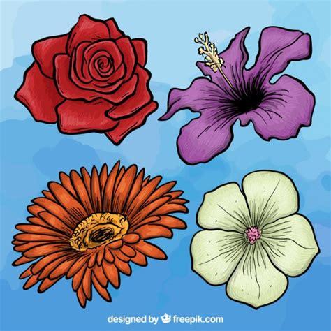 Imagenes De Flores Dibujadas A Mano | variedad de flores dibujadas a mano descargar vectores
