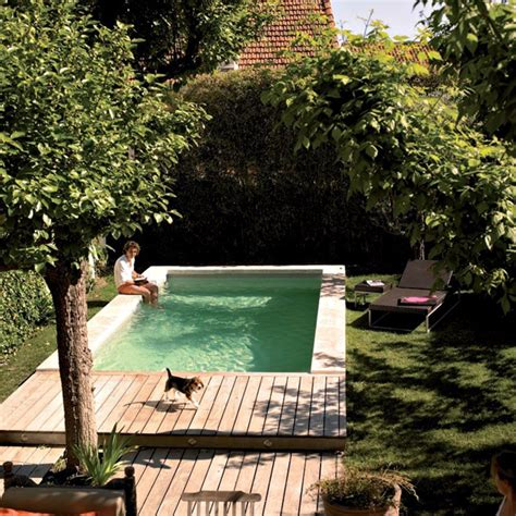 gorgeous plunge pools  tiny backyard home design  interior