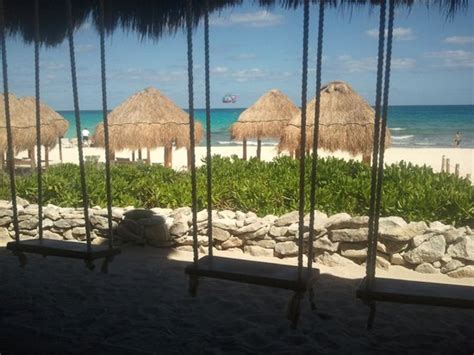 playa del carmen bar with swings beach bar swings picture of playa del secreto playa del
